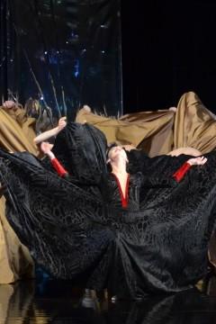Hattyúk tava (Székesfehérvári Balett Színház)